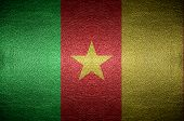 Closeup Screen Cameroon Flag Concept On Pvc Leather For Background