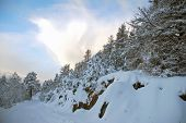 Norwegian winter landscape.