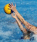 Two waterpolo players in actions during a match