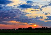 pic of horizon  - The sun rises behind clouds over Indiana farmland with trees silhouetted on the horizon - JPG