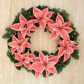 Poinsettia flower wreath with fir over light oak background.