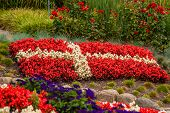 Danish Flag Made Out Of Flowers