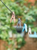 Clothesline With Clothespins On Backyard