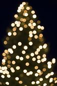 Christmas tree bokeh shot can be used as background