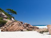 White Coral Sand In Seychelles