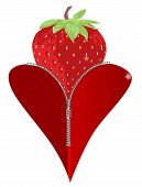 stock photo of zipper  - A red heart with a zipper showing a large red strawberry rising from within - JPG