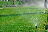 foto of spayed  - Lawn sprinkler spaying water over green grass - JPG