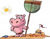 kid hippo