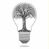 Isolated eco bulb