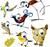 image of hummingbirds  - vector isolated cartoon cute animals set - JPG