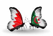 Two Butterflies With Flags On Wings As Symbol Of Relations Bahrain And Algeria