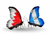 Two Butterflies With Flags On Wings As Symbol Of Relations Bahrain And Guatemala