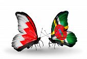 Two Butterflies With Flags On Wings As Symbol Of Relations Bahrain And Dominica