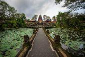 picture of saraswati  - Lotus pond and Pura Saraswati temple in Ubud - JPG