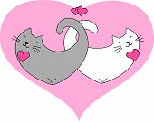 Funny cats in a heart shape