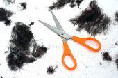Trimmed Hair