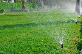picture of spayed  - Lawn sprinkler spaying water over green grass - JPG