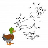 picture of duck  - Game for children - JPG