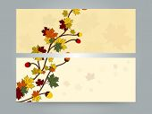 picture of acorn  - Creative stylish website header or banner set decorative by maple leaves and acorn - JPG