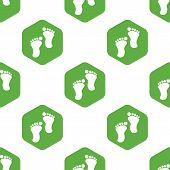 image of webbed feet white  - Vector image of footprint in hexagon - JPG