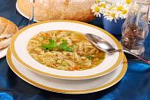 picture of tripe  - traditional Polish Tripe Soup with vegetables in white plate - JPG