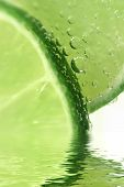 Macro Limes With Water Element