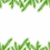 Seamless Christmas tree branches background
