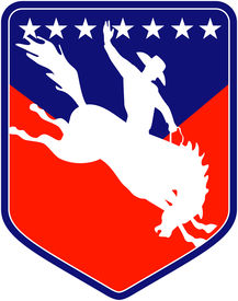 foto of bucking bronco  - retro style illustration of a silhouette of an American Rodeo Cowboy riding a bucking bronco horse jumping viewed from side inside shield with stars - JPG