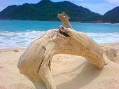 beach in banda aceh