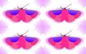 texsture of butterflies