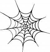 picture of spider web  - Scalable vectorial image representing an Halloween spider web - JPG