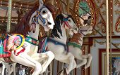 Three Carousel Horses