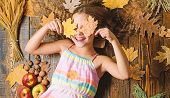 Coziest Things About Fall. Kid Cute Girl Relax Wooden Background Autumn Attributes Top View. Child L poster