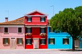 Beautifully Landscaped Yard In Burano, Italy. Yard With Colorful Houses, Red, Pink, Blue And Heart-s poster