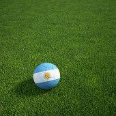 3D Darstellung einer argentinischen Soccerball lying on grass