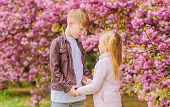 Romantic Date In Park. Spring Time To Fall In Love. Kids In Love Pink Cherry Blossom. Love Is In The poster