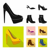 Vector Design Of Footwear And Woman Icon. Set Of Footwear And Foot Stock Vector Illustration. poster