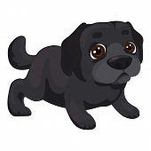 Labrador Puppy Icon. Cartoon Of Labrador Puppy Vector Icon For Web Design Isolated On White Backgrou poster