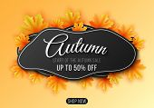 Autumn Sale. Abstract Seasonal Banner From Liquid Forms With Maple Leaves. Fluid Design. Golden Foli poster