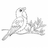 Cartoon Bird For Coloring Book Or Pages poster
