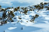 Beautiful Winter Mountain Landscape.