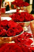 Red Rose Arrangements