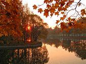 Autumn. Morning.