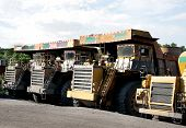Heavy coal dumpers in a opencast mine
