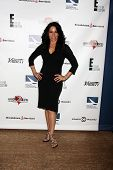 LOS ANGELES - SEP 19:  Elena Varela at the Heller Awards 2013 at Beverly Hilton Hotel on September 1