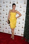 LOS ANGELES - SEP 20:  Bellamy Young at the Emmys Performers Nominee Reception at  Pacific Design Ce
