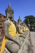Buddha statue set
