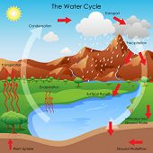 stock photo of groundwater  - vector illustration of diagram showing water cycle - JPG