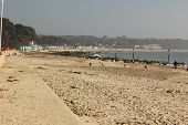 picture of avon  - Avon beach in hampshire on the 9th march 2014 - JPG