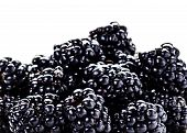Heap Of Fresh Blackberries Isolated On White Background, Close Up. Summer Berries,